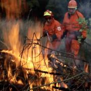 incendi-boschivi-prevenzione-rfid