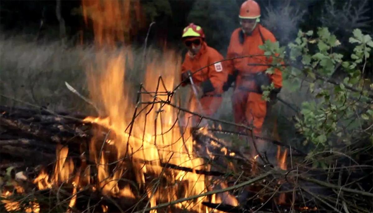 incendi boschivi rfid prevenzione